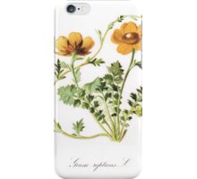 Botanical Prints iPhone Case/Skin