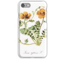 Botanical Prints iPhone Case/Skin
