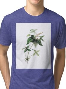 Botanical Prints Tri-blend T-Shirt