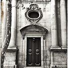 Mi Casa es su Casa: Barceloneta Dog Walk by Andy Freer