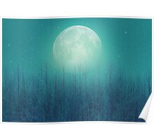 The Moon Shines Bright In Such A Night Poster