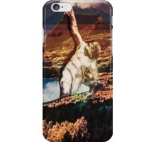 From Soil To Sky iPhone Case/Skin