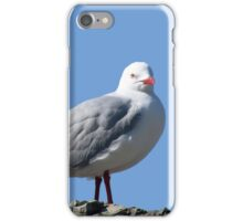 Gull iPhone Case/Skin