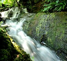 Waterfall Creek by ncp-photography