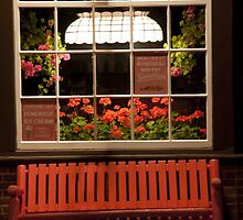 Red Bench and Geraniums by phil decocco