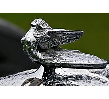 Hood Ornament - 1932 Plymouth Photographic Print