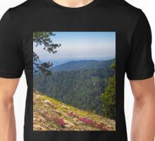 Fresno dome trail near North Fork Unisex T-Shirt