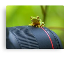 Frog on a Lens Canvas Print