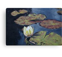 Waterlily in Oil on Canvas Canvas Print