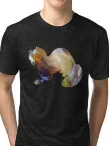 Ferret Tri-blend T-Shirt