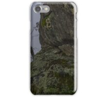 Tree tung rock iPhone Case/Skin