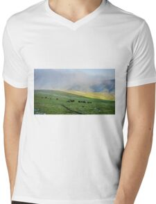 Herd Of Horses high In The Mountains Mens V-Neck T-Shirt