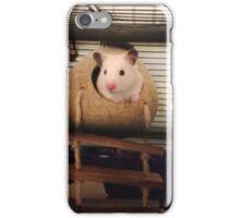 peekaboo coconut  iPhone Case/Skin