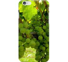 Walking through the Vineyard    ^ iPhone Case/Skin