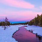 Magenta River by Linda Sparks