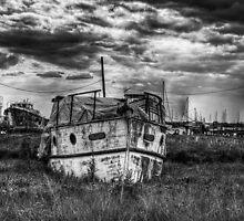 Toujours by Nigel Bangert