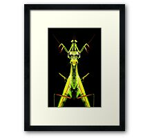 mantis king Framed Print