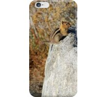 Golden-mantled Ground Squirrel iPhone Case/Skin