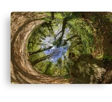 Squirrel Sculpture in Prehen Woods, Derry - Sky In Canvas Print