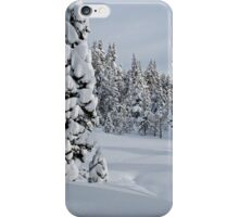 Serene Snow Scene iPhone Case/Skin