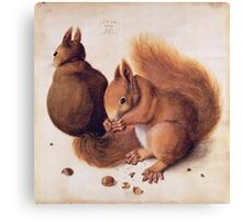 Red Squirrels by Albrecht Durer Canvas Print