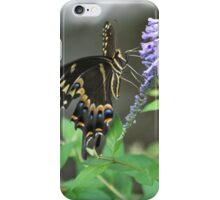 Beauty on Beauty iPhone Case/Skin