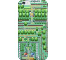 Pokemon Town iPhone Case/Skin