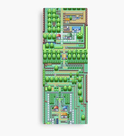 Pokemon Town Canvas Print