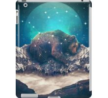 Under the Stars (Ursa Major) iPad Case/Skin