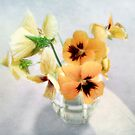 Golden Pansies Still Life by LouiseK
