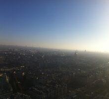 Paris Skyline by Nutria