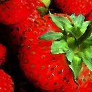 berryclose by tinncity