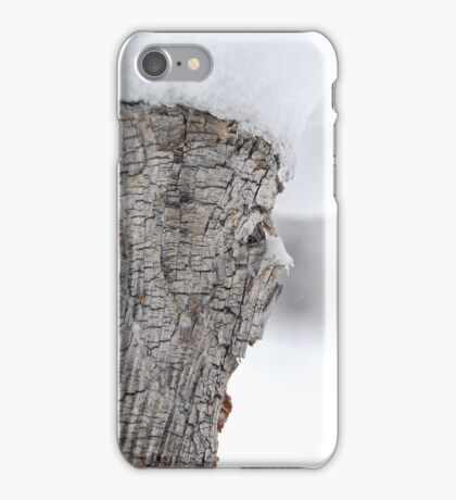 Snow Covered Tree Stump iPhone Case/Skin