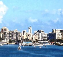 San Juan Skyline by Susan Savad