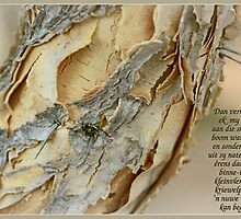 Papierbasboom by Rina Greeff