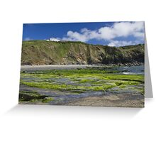 A green beach Greeting Card