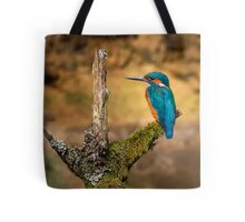 Kingfisher on branch Tote Bag