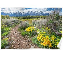 Spring trails through the Grand Tetons Poster
