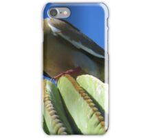 Dove on Cactus iPhone Case/Skin