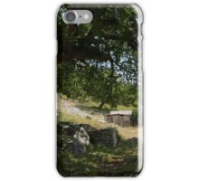 Croatian Farmstead iPhone Case/Skin