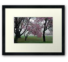Blooms in the Fog Framed Print