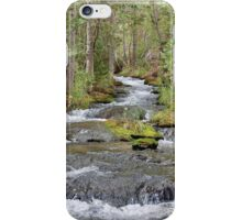 The Carson River Flows iPhone Case/Skin