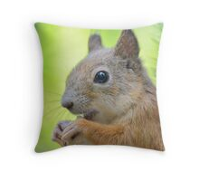 Cute squirrel close-up Throw Pillow