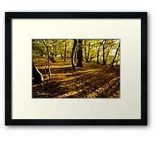 London Woods Framed Print