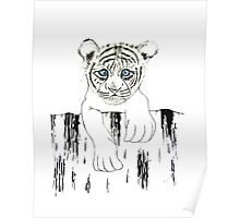 Little tiger Poster