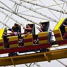 Roller Coaster by Karen Checca