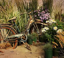 An Old Bicycle ~ Move It or Use It? by SummerJade