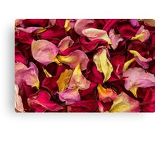 Dried Rose Pedals Canvas Print