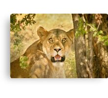 The Huntress Canvas Print