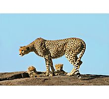 Under Mom's watchful eye Photographic Print